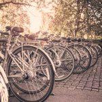 bike-4 life-2021